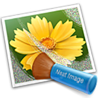 One Neat Image Product - $40 value